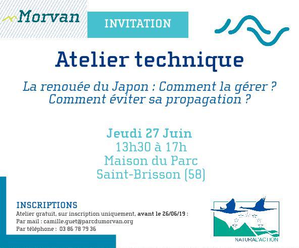 Affiche Atelier Renouées Morvan - (c) PNR Morvan - Centre de ressources EEE