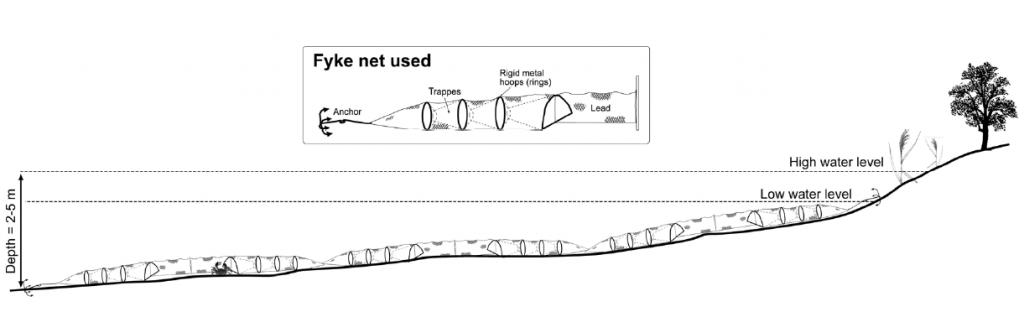 Exemple de nasses utilisées pour la capture du Crabe chinois dans l'estuaire du Guadalquivir. D'après Garcia-de-Lomas et al., 2010.