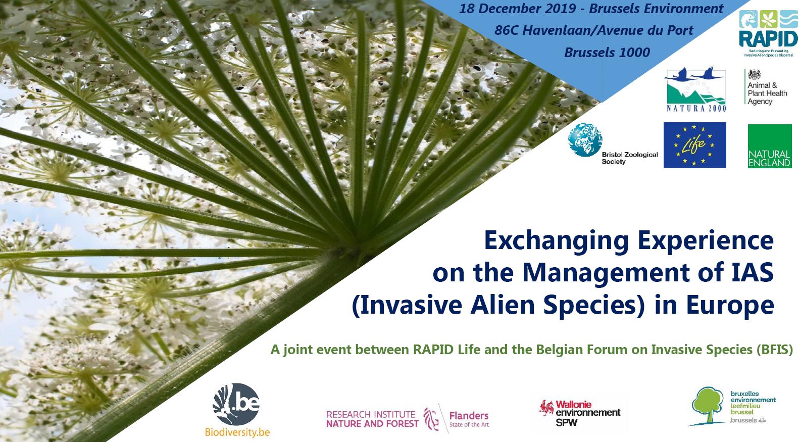 Flyer evenement echange europeen Life Rapid