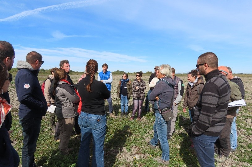 Groupe terrain reunion REST Camargue - (c) alain-dutartre - Centre de ressources EEE